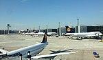 Lufthansa jumbo line up (21777517698).jpg