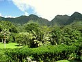 Lyon Arboretum, Oahu, Hawaii - general view.jpg