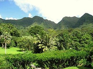 arboretum, botanical garden in Honolulu, Hawaii, USA