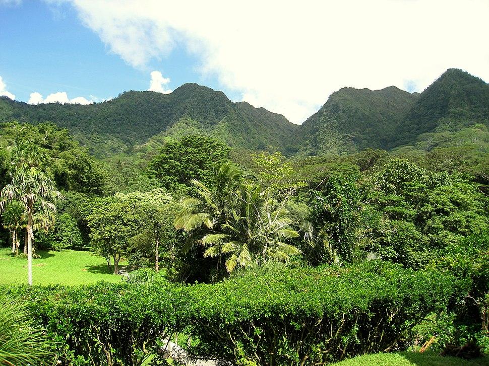 Lyon Arboretum, Oahu, Hawaii - general view