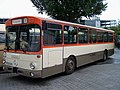 MB O305 Rebstock 09052009.JPG