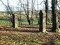 Mains House gateposts.JPG