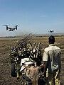 Malian boy watches incoming CV-22 Ospreys.jpg