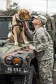 Man's best friend helps NC Guardsman with PTSD 140111-Z-GT365-027.jpg