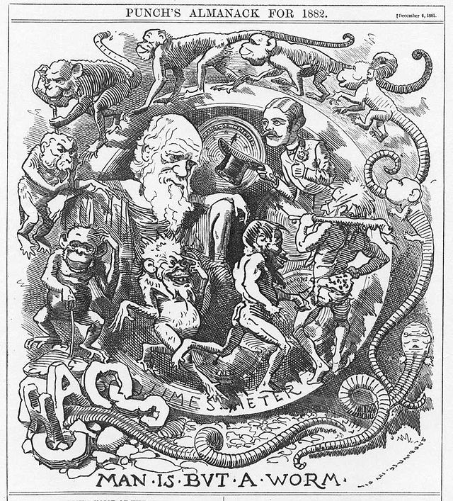 Caricatures Of Charles Darwin And His Evolutionary Theory In