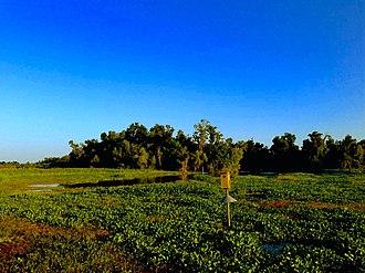Mandalay National Wildlife Refuge - Image: Mandalay National Wildlife Refuge 2