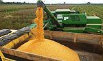 Maquinário agrícola do governo auxilia na colheita de milho em Capixaba (26945232130).jpg