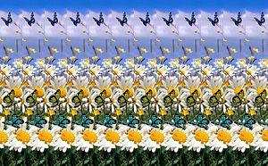 Autostereogram - Image: Mariposas autoestereoscópicas