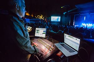 Venue (sound system) - Robb Allan mixing Massive Attack on S3L-X