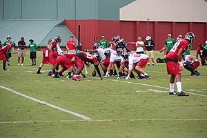 Sports in Georgia (U.S. state) - Atlanta Falcons players at training camp