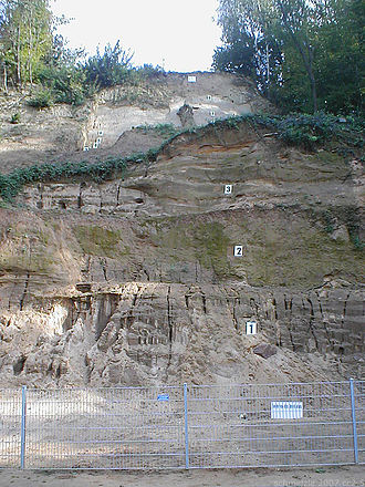 Mauer 1 - Sediment layers at the mine's edge in 2007
