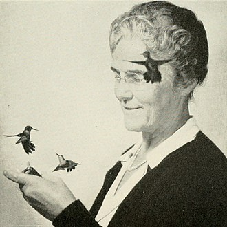 May Rogers Webster - May Rogers Webster with hummingbirds, photographed with a strobe light by Harold Eugene Edgerton