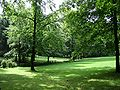 Meinerzhagen - Stadtpark 03 ies.jpg