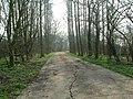 Melchbourne - geograph.org.uk - 383247.jpg