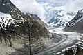 Mer de Glace in Chamonix (2527996973).jpg