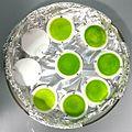Microalgae filters.jpg