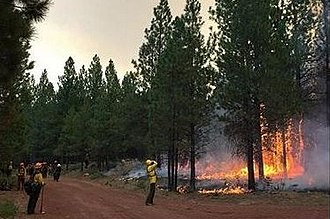 Milli Fire - Firefighters working on the Milli Fire