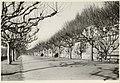 Montpellier. Le Peyrou, Eastern Terrace (3486765386).jpg