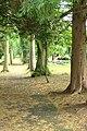 Moravian burial ground towards entrance.jpg