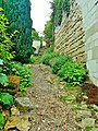 Most beautiful villages montsoreau 5.jpg