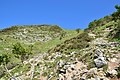 Mount Ibuki hiking, Shiga Prefecture; September 2019 (06).jpg