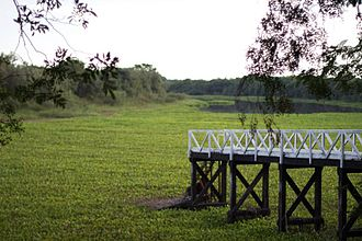 Chaco Province - Dock on a southeastern wetland close to Paraná River