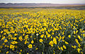 My Public Lands Roadtrip- Carrizo Plain National Monument in California (18891048502).jpg