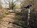 NCN Millennium Milepost MP224 Radley Oxfordshire.jpeg