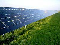 Les panneaux solaires, inclinés à environ 30 degrés, reflètent le ciel bleu au-dessus d'un champ herbeux.