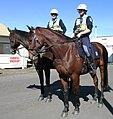 NSW Mount Police.JPG