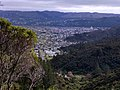 Naenae, Lower Hutt 5011, New Zealand - panoramio (2).jpg
