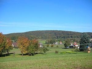 Südseite des bewaldeten Nammer Lager