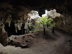 Naracoorte Caves National Park 1.jpg