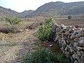 Navidhand new 455 - panoramio.jpg