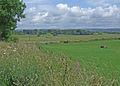 Near Laggan - geograph.org.uk - 1450045.jpg