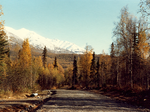 Chugiak, Anchorage - Needels Drive, near the intersection of the Old Glenn Highway and North Birchwood Loop Road, as it appeared in 1982.  The road has since been paved.