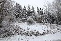 Neige à Saint-Rémy-lès-Chevreuse le 7 février 2018 - 21.jpg