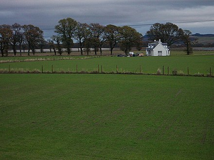 The uncharacteristically flat lands of the Carse of Gowrie Newlands, near Cairnie Pier - geograph.org.uk - 84373.jpg