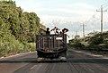 Niños siendo transportados en un camion 350.jpg