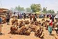 Niger, Boubon (13), weekly market.jpg