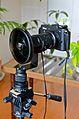 Nikon 1 V1 + Fisheye FC-E9.jpg