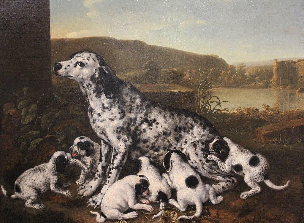 Nivaagaard Museum, Pieter van der Hulst, Dalmatian dog with puppies