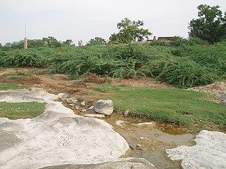 Ungampalayam - Image: Noyyal, Ungampalayam 5