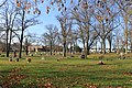 Oakwood Cemetery, Grand River Avenue ^ Locust Street, Farmington Hills, Michigan - panoramio.jpg