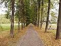 Old Kstovo Park - 2020-09-21 (2).jpg