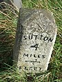 Old Milestone - geograph.org.uk - 1189288.jpg