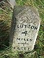 Old Milestone - geograph.org.uk - 1189288.jpg