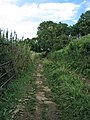 Old mineral railway track - geograph.org.uk - 1580140.jpg