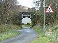 Old railway bridge - geograph.org.uk - 1242472.jpg