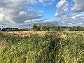 Oude Roode Haan, Groningen, Dal van de Hunze, Euvelgunne, Stainkoelen 22 33 38 827000.jpeg